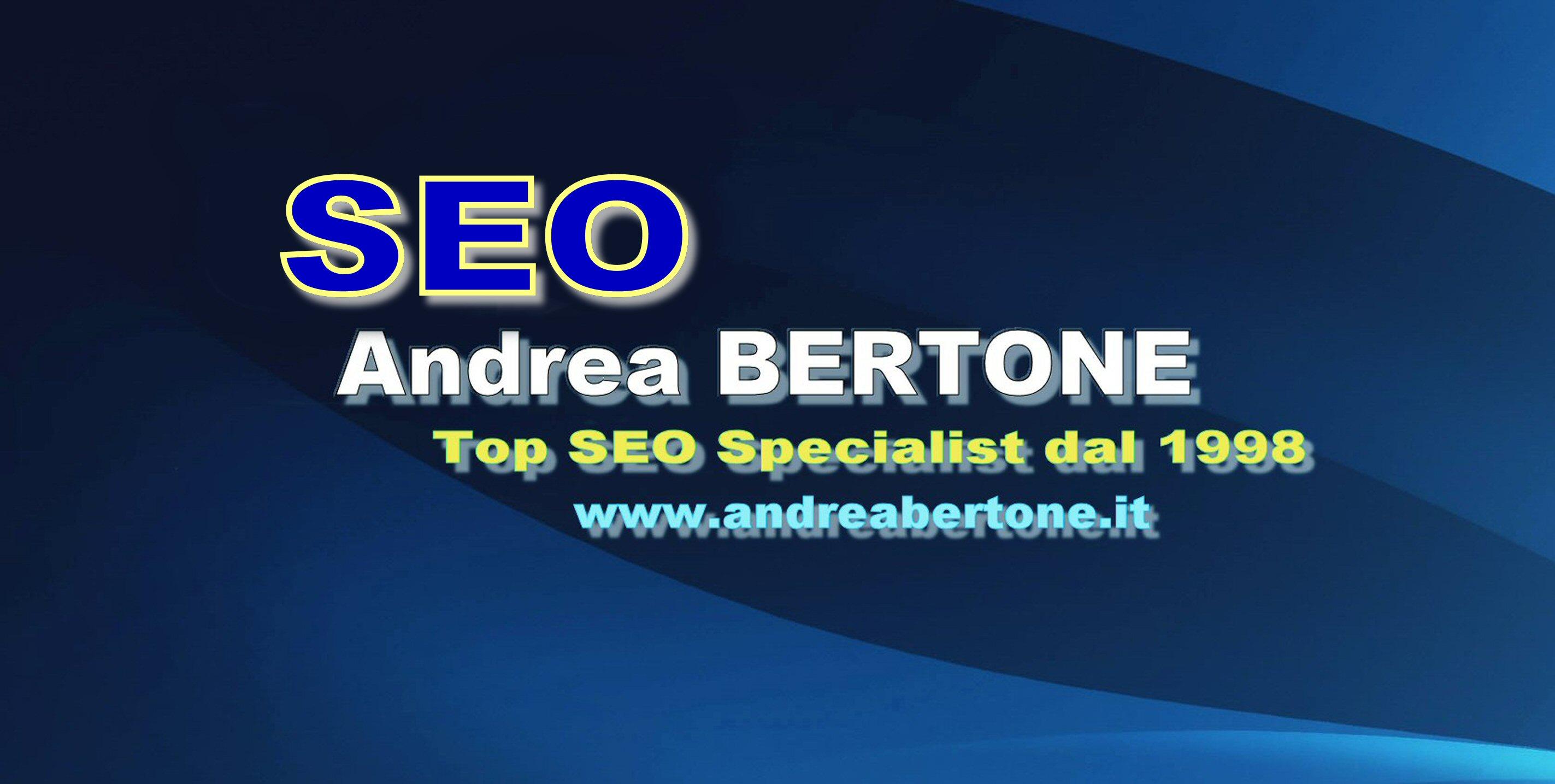 GOOGLE SEO ANDREA BERTONE